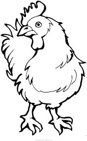 Coloriages La Ferme Page Animaux Coloriage Coq Dessiner Modele