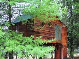 A Treehouse  Balcony  Pool U003d Heaven  Tree Houses  Pinterest Treehouse Accommodation