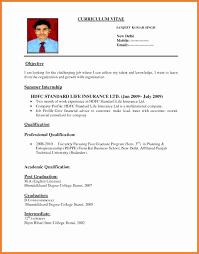 Job Application Biodata Biodata Format Job Application Doc Cover