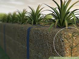 image titled grow a straw bale garden step 9bullet1