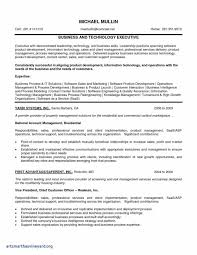 Property Development Business Plan Template Free New Executive Style