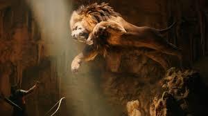 lion photo wallpaper 283892