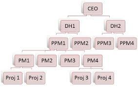 Project Organization Hierarchy Organogram In Zilicuspm