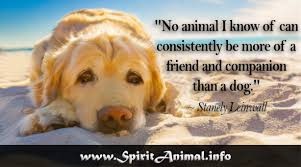 Dog Quotes Extraordinary Dog Quotes