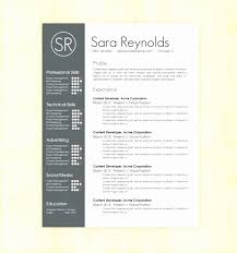 2 Page Resume Template From 2 Page Resume Templates Free Download