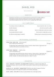 Professional Resume Template Free Unique Resume Template Word It Professional Dynaboo