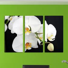 800x800 black and white canvas art with orchids