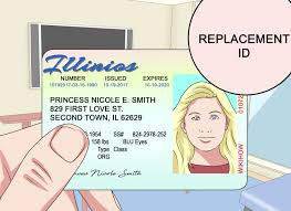 How To Get An Illinois State Id 13 Steps With Pictures