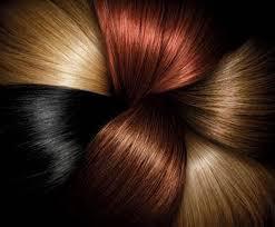 Fade Defying Shine Permanent Hair Color