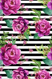 purple and black stripes backgrounds.  And Pink Sunrise  Black And White Stripes By Shopcabin Bright Purple Hand  Painted Flowers On A Black White Striped Background Fabric Wallpaper  For Purple And Backgrounds E