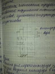 Перепишу от руки конспект реферат курсовой Прочие услуги  Перепишу от руки конспект реферат курсовой Мариуполь изображение 2