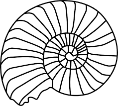 678ba81a080cafbec779a0e6c7dcf46b spiral shell clip art outline download vector clip art online on spiral pattern template