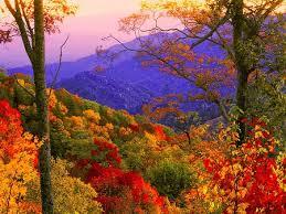 autumn mountains backgrounds. Fine Autumn Autumn View  View Colors Colorful Nature Mountain Autumn For Mountains Backgrounds O