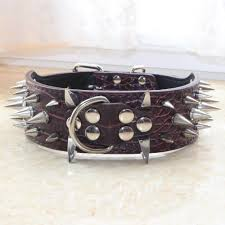 details about spiked studded dog collar 2 wide leather dog collar for pitbull terrier bully