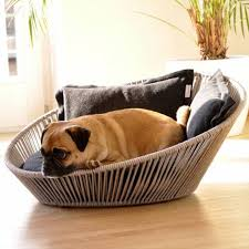 Buying Fancy Dog Beds