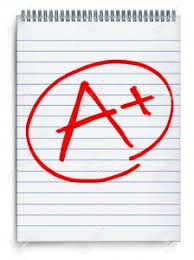essay experts com essay experts