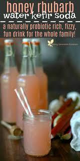 kefir drink. honey rhubarb water kefir soda :: a naturally probiotic rich fizzy, fun drink for 0