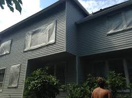 residential painting contractor for sline area residents