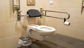 bathroom safety for seniors. A High Level Toilet With Handrail For Disabled And/or Senior People Bathroom Safety Seniors