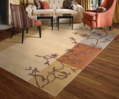 lcc fr area rug cleaning tips