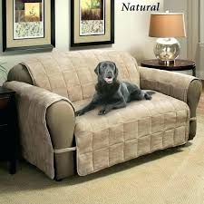 dog leather couch couch pet protector leather couch protector chair covers slipcovers for pet couch protector