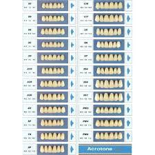 Acrotone Acrylic Teeth