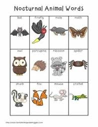 diurnal animals list for kids. Fine List Nocturnal Animals Like The Moth Idea Use Butterfly Craft Ideas With  Shades Of Browns For Diurnal Animals List Kids