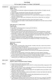 Data Tech Resume Samples Velvet Jobs