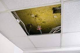 what paint to use for false ceilings