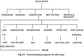 my phd dissertation timeline
