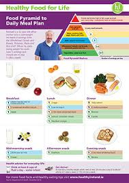 Daily Meal Chart For Good Health Healthy Eating Guidelines And Resources Hse Ie