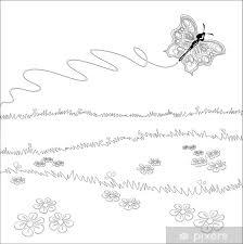 Farfalla Sul Prato Immagine In Bianco E Nero Da Colorare Wall