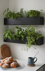 Indoor Kitchen Herb Garden Kit 17 Best Ideas About Herb Wall On Pinterest Kitchen Herbs Wall