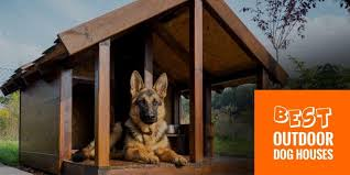 Foldable Houses Top 6 Best Outdoor Dog Houses Wired Wooden Foldable