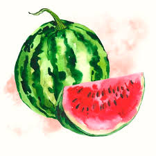 watermelon fruit wallpaper. watercolor watermelon background by depiano | crated fruit wallpaper