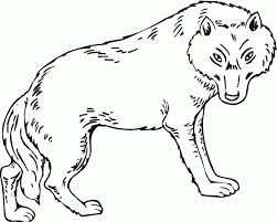 Make your world more colorful with printable coloring pages from crayola. Cute Wolf Coloring Pages Coloring Home