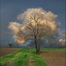 Cloud Formations - Education - Lake Havasu City, Arizona - 1,822 Photos |  Facebook
