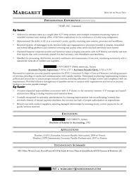 Professional Resume Cv Writing Style Resumes Professional