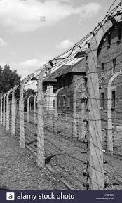 barbed wire fence holocaust. Interesting Holocaust Barbed Wire Electrical Fence At Auschwitz Concentration Camp Poland   Stock Image And Wire Fence Holocaust B
