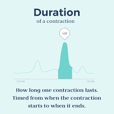 Tracking Contractions Chart Timing Contractions What You Need To Know Bloomlife
