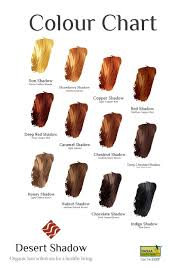 Chestnut Hair Colour Chart Fashion Light Chestnut Hair Color Chart Enchanting Desert