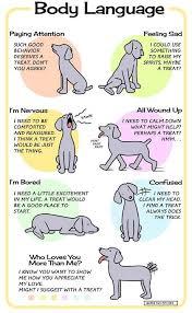 28 Punctual Body Language Chart
