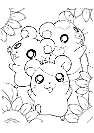 Small Picture Cute Pet Hamster Coloring Pages for Kids Womanmatecom