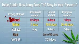 How Long Do Drugs Stay In Your System Chart Heres How Long Weed And Edibles Stay In Your System