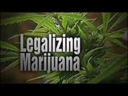 should marijuana be legalized essay third party candidates reasons why marijuana should be legalized essay