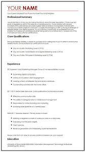 Best Professional Cv Format Best Cv Example Myperfectcv