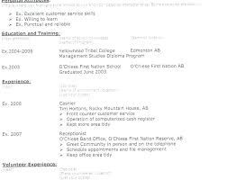 Resume Title Examples Resume Title Examples Resume Title Example