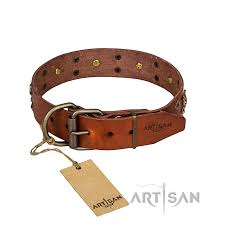 strong leather dog collar with reliable elements