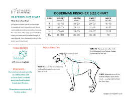 Doberman Weight Chart Doberman Pinscher Size Guide Voyagers K9 Apparel