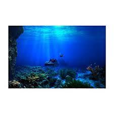 Amazon Com Sun Shine Aquarium Background Fish Tank Wallpaper